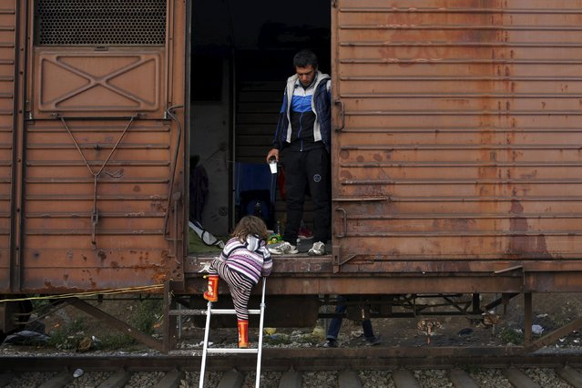 A child climbs a ladder at a train wagon at a makeshift camp for migrants and refugees at the Greek-Macedonian border near the village of Idomeni, Greece, March 28, 2016. (Photo by Marko Djurica/Reuters)