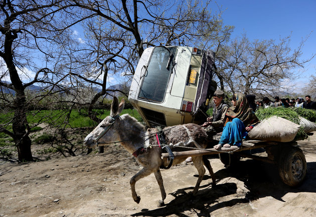Afghan children travel on a donkey cart past the site of roadside bomb explosion on the outskirts of Kabul, Afghanistan, Monday, April 11, 2016. An Afghan official says at least one person has been killed when a bomb ripped through a bus carrying education ministry employees to work in the capital, Kabul. (Photo by Rahmat Gul/AP Photo)
