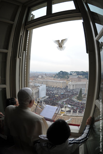 Pope Benedict XVI releases a dove from the window of his studio at the end of his Sunday Angelus prayer in St. Peter's Square