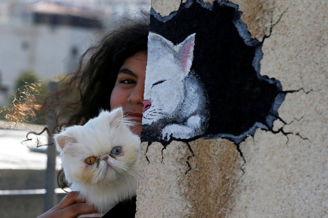 Jude Hajjaj, carries her cat near a picture of her cat painted on the wall by her father Osama Hajjaj, who teams up with his neighbours in creating works of art at their roof during the curfew imposed by the Jordanian government amid concerns over the spread of the coronavirus disease (COVID-19) in Amman, Jordan, May 10, 2020. (Photo by Muhammad Hamed/Reuters)