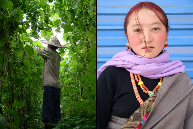 Left: Fujian farmer lost in a tangle of squash vines. Right: Hip Tibetan youth, Sichuan. (Photo by Tom Carter/The Atlantic)