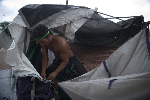 In this Monday, August 24, 2015 photo, a homeless man fixes his tent to prepare for an approaching storm in the Kakaako district of Honolulu. Homelessness in Hawaii has grown steadily in recent years, leaving the state with the nation's highest rate of homeless people per capita. (Photo by Jae C. Hong/AP Photo)