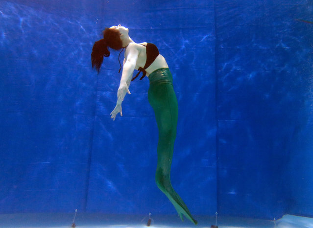 Vickie Leuenberger practices with a mermaid tail from AquaMermaid in a pool in Montreal, February 19, 2015. (Photo by Christinne Muschi/Reuters)