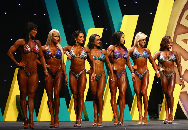Competitors in the Pro Figure division pose during the Arnold Classic Australia at The Melbourne Convention and Exhibition Centre on March 14, 2015 in Melbourne, Australia. (Photo by Robert Cianflone/Getty Images)