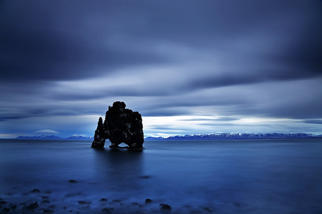 Icelandic Dinosaur - Hvítserkur