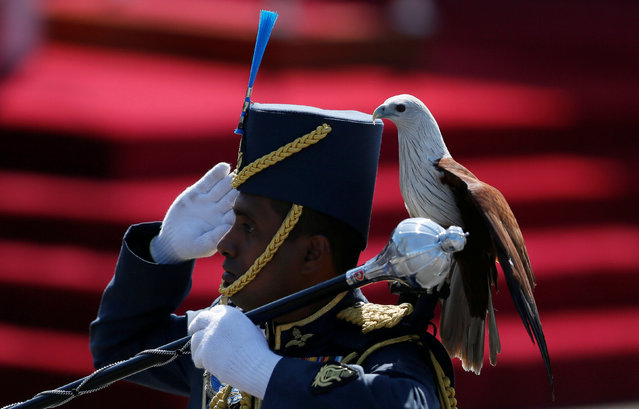 An Air Force soldier marches with an eagle on his shoulder, the symbol of Sri Lanka's Air Force, during Sri Lanka's 69th Independence day celebrations in Colombo, Sri Lanka February 4, 2017. (Photo by Dinuka Liyanawatte/Reuters)