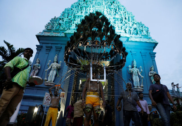 Devotees leave a temple in their kavadis during the Hindu festival of Thaipusam in Singapore February 9, 2017. (Photo by Edgar Su/Reuters)