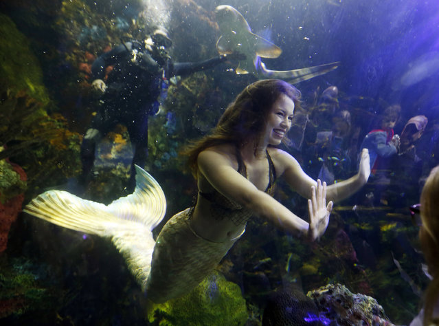 Mermaid Hales Parcells geets children as she performs at the Virginia Aquarium in Virginia Beach, Va., Monday, April 3, 2017. The Aquarium presents a mermaid show one night each week during the month of April. (Photo by Steve Helber/AP Photo)