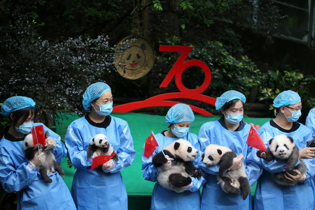 Breeders hold Chinese flags and panda cubs born in 2019 as they pose for pictures during an event marking the upcoming 70th anniversary of the founding of the People's Republic of China at Chengdu Research Base of Giant Panda Breeding in Chengdu, Sichuan province, China September 24, 2019. (Photo by Reuters/China Daily)