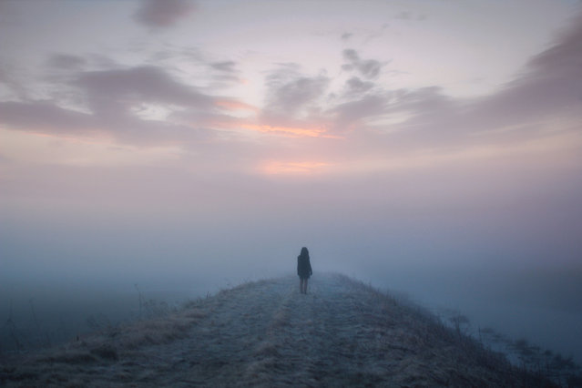 Photography By Elizabeth Gadd
