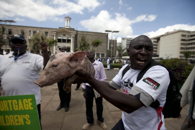 """A Kenyan demonstrator holding a piglet moves towards the gate of parliament in Nairobi, Kenya, Tuesday, May 14, 2013. Police fired tear-gas, water cannons and swung their batons at protesters gathered outside Kenya's parliament building to pile pressure on the country's legislators to drop demands for a salary increment. About 250 people carrying placards and banners marched through the Nairobi's city center and staged a sit in at the entrance legislators use to enter parliament. There the protesters released about two dozen piglets and a pig to symbolize """"the greed of the country's legislators"""". (Photo by Sayyid Azim/AP Photo)"""