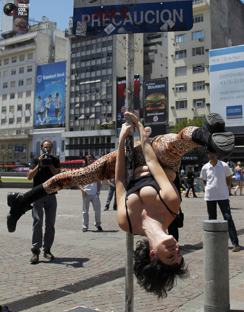 Zully Ochoa performs a pole dancing routine to promote the Miss Pole Dancing Southamerica 2010 competition in Buenos Aires November 5, 2010. (Photo by Enrique Marcarian/Reuters)