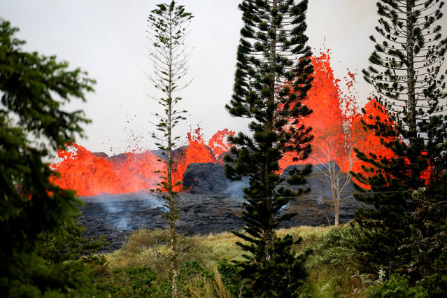 Lava erupts on the outskirts of Pahoa during ongoing eruptions of the Kilauea Volcano in Hawaii, U.S., May 19, 2018. (Photo by Terray Sylvester/Reuters)