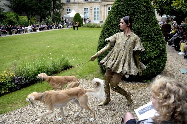 A model walks with dogs as she presents a creation by Frank Sorbier during the Haute Couture Fall-Winter 2013/2014 collection show in Paris, on July 3, 2013. (Photo by Martin Bureau/Getty Images)