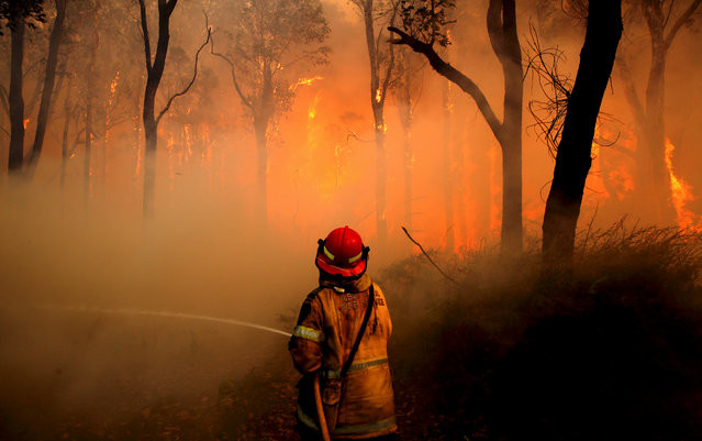 A New South Wales (NSW) Rural Fire Service firefighter sprays water on a bushfire in the suburb known as Salt Ash, located north of Newcastle in Australia, November 23, 2018. (Photo by Dan Himbrechts/AAP via Reuters)