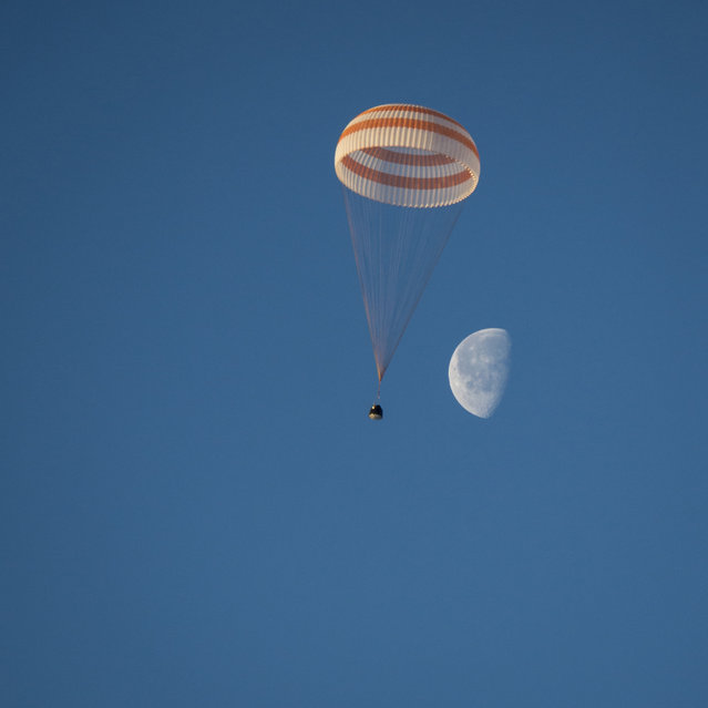The Soyuz TMA-14M capsule with International Space Station (ISS) crew members Barry Wilmore of the U.S., Alexander Samokutyaev and Elena Serova of Russia descends beneath a parachute just before landing southeast of Dzhezkazgan in central Kazakhstan, March 12, 2015. (Photo by Bill Ingalls/Reuters/NASA)