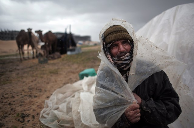 A Palestinian Bedouin man covers his head from the rain in the town of Khan Younis, southern Gaza Strip, Monday, February 22, 2016. (Photo by Khalil Hamra/AP Photo)
