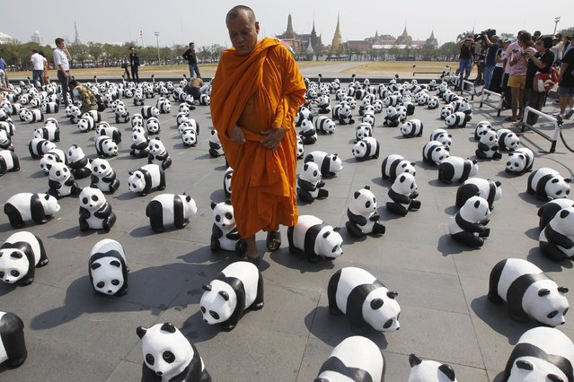 A Buddhist monk walks among panda sculptures in front of Grand Palace during an exhibition by French artist Paulo Grangeon in Bangkok, Thailand, March 4, 2016. (Photo by Chaiwat Subprasom/Reuters)