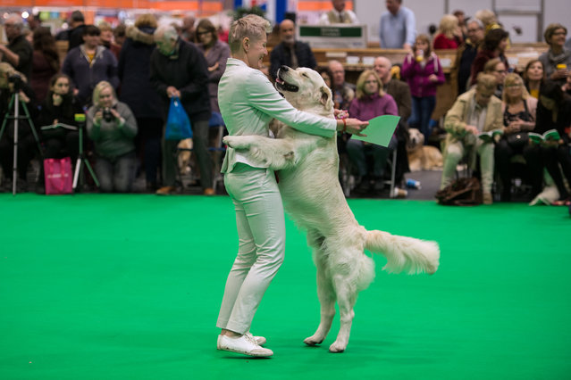 A woman embraces her golden retriever dog after it was awarded a prize on the first day of the Crufts dog show at the National Exhibition Centre in Birmingham, central England, on March 7, 2019. (Photo by Oli Scarff/AFP Photo)
