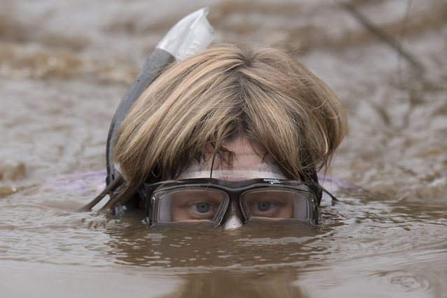 Elise Graham takes part in the World Bog Snorkelling Championships 2017 with a rubber duck on her back on August 27, 2017 in Llanwrtyd Wells, Wales. (Photo by Matthew Horwood/Getty Images)