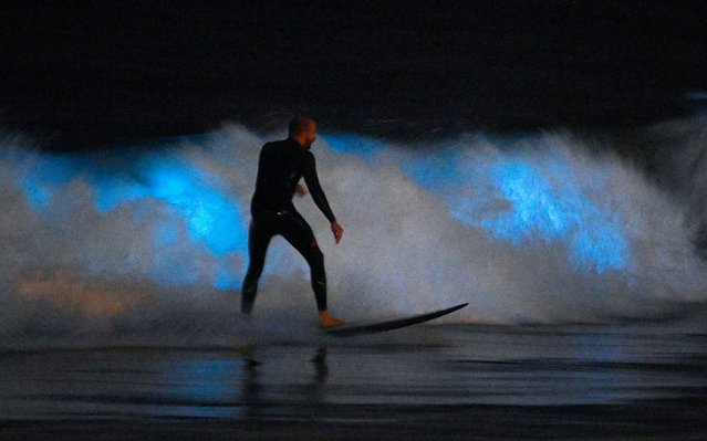 A surfer rides a wave as bioluminescent plankton lights up the surf around him during the coronavirus outbreak, Thursday, April 30, 2020, in Newport Beach, Calif. California Gov. Gavin Newsom on Thursday temporarily closed Orange County's coastline after large crowds were seen there. (Photo by Mark J. Terrill/AP Photo)
