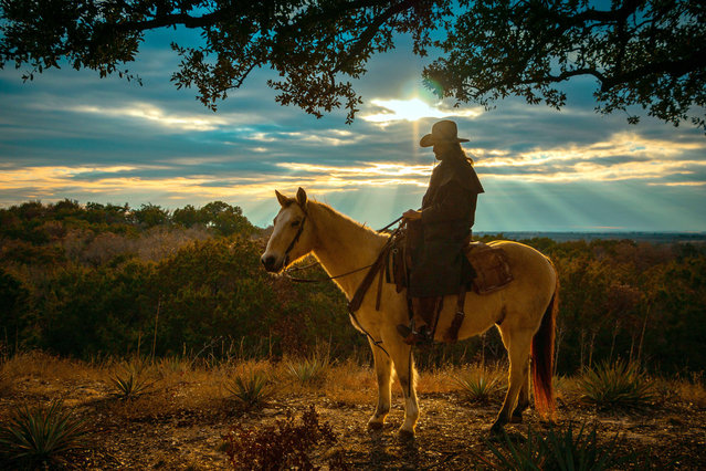 """""""The Buckskin"""". As I was waiting for the sunset to get a silhouette of rider on horseback the God light begin to break thru the clouds and outlining the horse in a glow of yellow light. Never got my silhouette but got a better picture. Photo location: Weatherford, Texas. (Photo and caption by Bill Stipp/National Geographic Photo Contest)"""