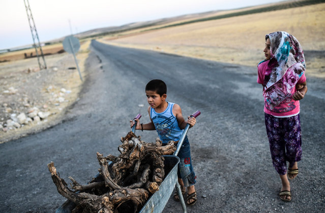 A young boy pushes a wheelbarrow with wood next to a young girl on September 1, 2016 the Turkish-Syrian border town of Karkamis, in the southern region of Gaziantep, near Syrian-Turkish border town of Jarabulus. (Photo by Bulent Kilic/AFP Photo)