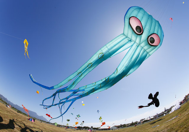 """A photograph taken with a wide angle lens showing kites flying during the Cape Town International Kite Festival in Muizenberg, South Africa, November 1, 2014. International kite flyers from Singapore, Germany and New Zealand showcased some never seen before kites including Toothless from the childrens film """"How To Train Your Dragon 2"""" during Africa's biggest kite festival viewed by around 20,000 visitors. (Photo by Nic Bothma/EPA)"""