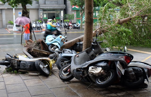 Scooters lie piled up against a uprooted tree caused by strong winds of typhoon Megi at Xindian district in New Taipei City on September 28, 2016. (Photo by Sam Yeh/AFP Photo)