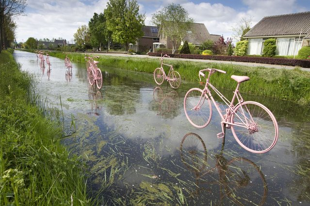 Pink bicycles placed just above the water celebrate the arrival of the Giro d'Italia in Schalkwijk, a small town ouside of Utrecht, May 4, 2010. Several cities in the Netherlands placed pink art forms to announce the departure on May 8 of the international cycling event. (Photo by Michael Kooren/Reuters)