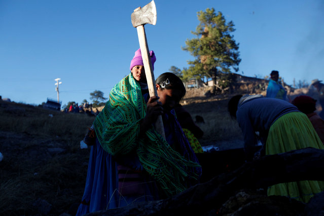A woman from the Tarahumara ethnic group cuts firewood with an ax while preparing for winter in Caborachi village, in Guachochi, Mexico, December 17, 2016. (Photo by Jose Luis Gonzalez/Reuters)