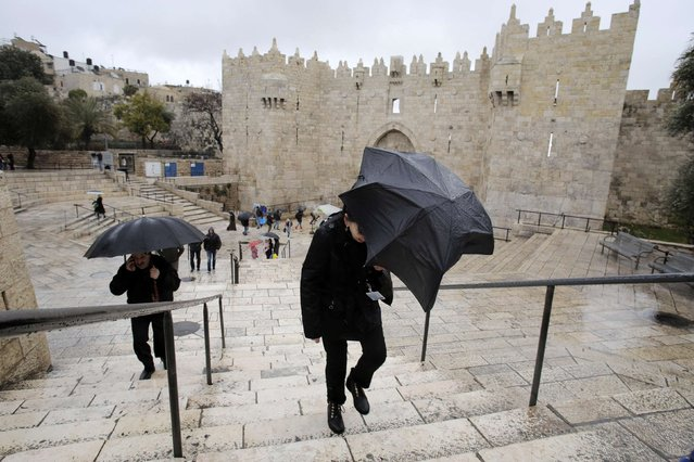 People walk with umbrellas as it rains near Damascus Gate in Jerusalem's Old City February 19, 2015. (Photo by Ammar Awad/Reuters)