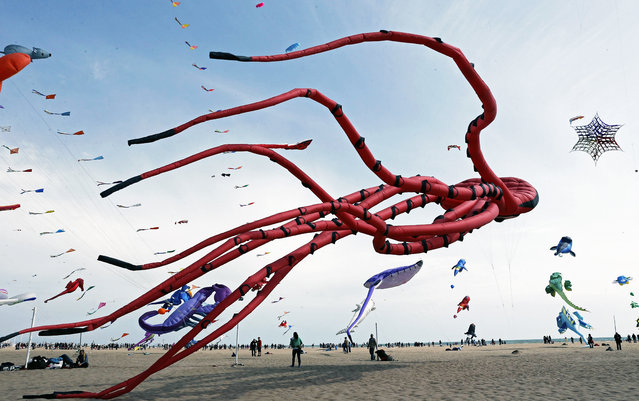 "An octopus-shaped kite is flown at the beach of Las Arenas during the second day of International Festival of the Winds ""City of Valencia"", in Valencia, eastern Spain, April 12, 2015. More than 100 kite pilots from Germany, Switzerland, Italy, France, Belgium and other countries took part in the 18th edition of the event. (Photo by Juan Carlos Cardenas/EPA)"
