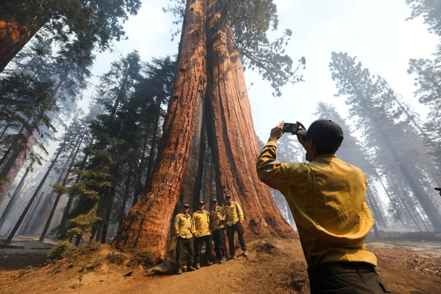 Firefighters from Orange County takes photos as the Windy Fire burns amid Sequoias in Sequoia National Forest near California Hot Springs, California, U.S., September 21, 2021. (Photo by David Swanson/Reuters)