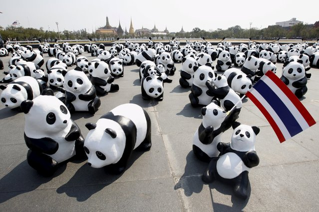 Panda sculptures are seen in front of Grand Palace during an exhibition by French artist Paulo Grangeon in Bangkok, Thailand, March 4, 2016. (Photo by Chaiwat Subprasom/Reuters)