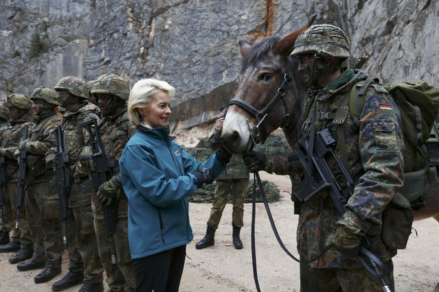 German Defence Minister Ursula von der Leyen pats a mule during a visit to Kaserne Hochstaufen (mountain infantry military barracks) in Bad Reichenhall, southern Germany, March 23, 2016. (Photo by Michaela Rehle/Reuters)