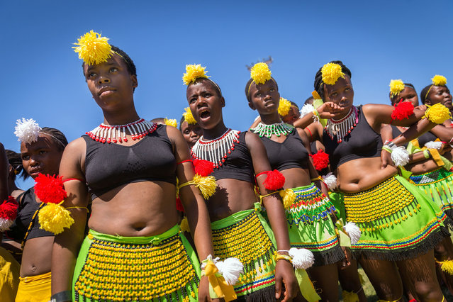 Dancers wearing traditional attires take part in the 7th Annual Ingoma Dance Competition organised by The Natal Playhouse theatre in Durban on March 21, 2017. The Ingoma Dance is considered one of the most purist forms of traditional Zulu dance. (Photo by Rajesh Jantilal/AFP Photo)