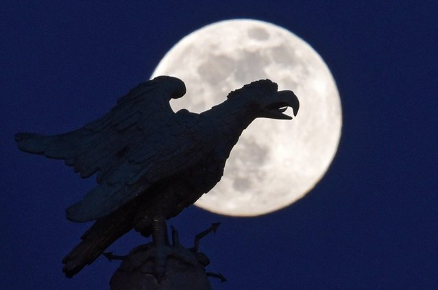 A large eagle is silhouetted against a full moon over the Sanssouci Castle Park in Potsdam, Germany late 21 April 2016. (Photo by Ralf Hirschberger/EPA)