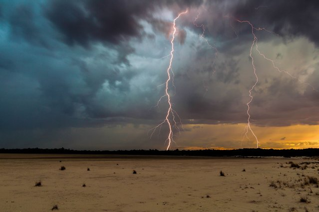 A thrill-seeking storm chaser captured the precise moment these giant lightning bolts lit up dark skies in a series of incredible storms. (Photo by Craig Eccles/Solent News & Photo Agency)