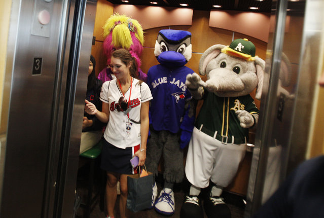 MLB Baseball Mascots (from left) Slider of the Cleveland Indians, Ace of the Toronto Blue Jays, and Stomper of the Oakland A's ride in an elevator before the start of the game between the Cleveland Indians and the Chicago White Sox on July 26, 2015 at Progressive Field in Cleveland, Ohio. The Indians are celebrating Slider's 25th birthday today. (Photo by David Maxwell/Getty Images)