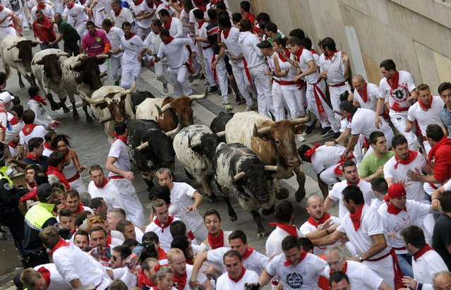 Runners sprint in front of Torrestrella fighting bulls on Santo Domingo street during the first running of the bulls of the San Fermin festival in Pamplona July 7, 2014. Four people were hospitalised on Monday on the first day of Spain's San Fermin bull run, a daily race through the narrow, cobbled streets of Pamplona that forms part of the northern city's week-long festival. (Photo by Eloy Alonso/Reuters)