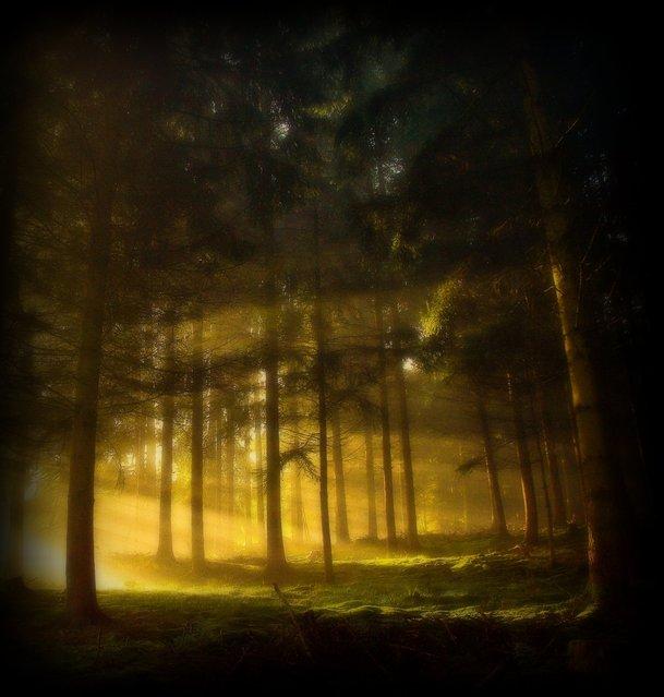 Erbland – A magical morning