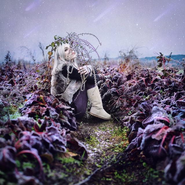 """"""".frostfall."""". (Kindra Nikole)"""