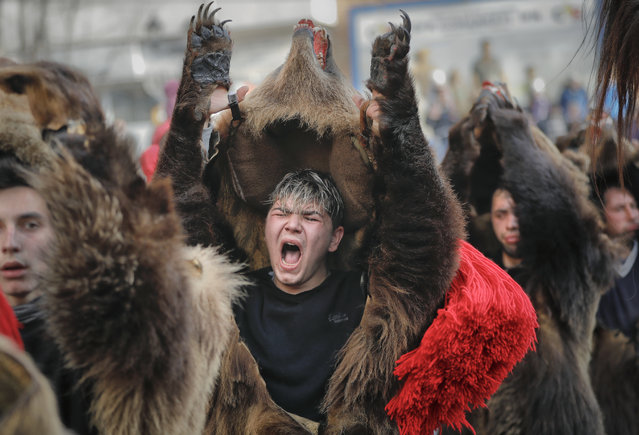 In this Saturday, December 30, 2017, picture a man wearing a bear fur costume screams while dancing in Comanesti, Romania. (Photo by Vadim Ghirda/AP Photo)