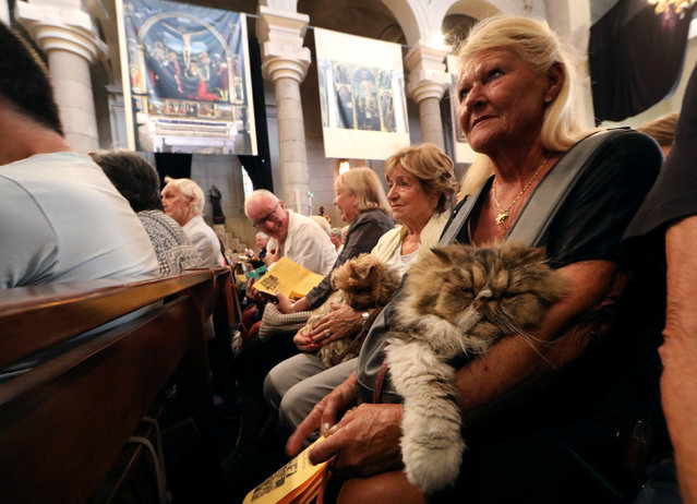 Pet owners attend a mass with their pets at the St Pierre D'Arene church to honour the feast of Saint Francis of Assisi, the patron saint of animals and the environment, in Nice, France October 2, 2016. (Photo by Eric Gaillard/Reuters)