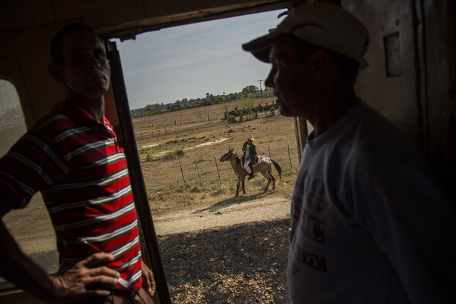 In this March 23, 2015 photo, passengers pass the time chatting on the landing of a train car as a farmer rides his horse alongside the tracks in the province of Holguin in Cuba. Cuba became the first Latin American country with a train system in the mid-19th century when colonial Spain began connecting Havana with the sugar-growing regions outside the capital. (Photo by Ramon Espinosa/AP Photo)