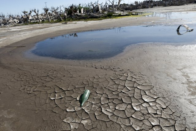 A bottle is seen on the mud in the onetime spa and resort town Epecuen, November 6, 2015. (Photo by Enrique Marcarian/Reuters)