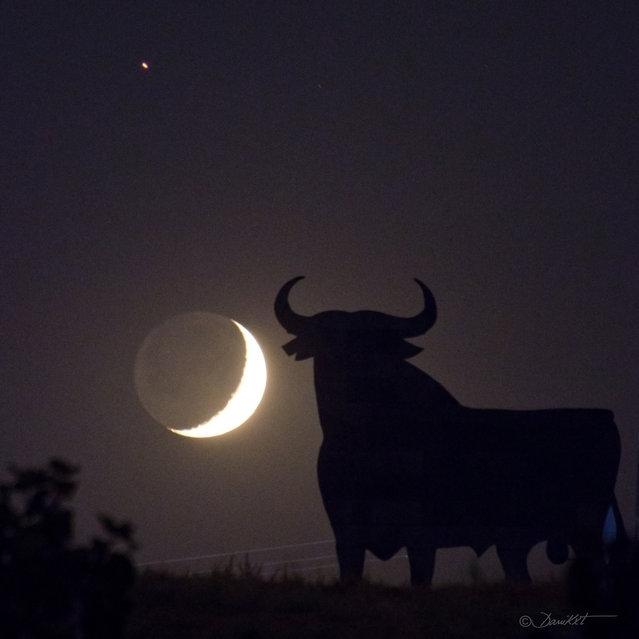 """Marte Luna y Toro"". (danicaxete)"