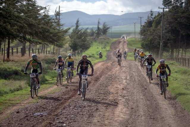 An handout picture taken on November 24, 2015 and released by Make It Kenya shows riders setting off from Emboli Farm in Laikipia County, 250 km north of the Kenyan capital Nairobi, on the fourth and final day of the Mt. Kenya Epik cycling challenge. The 4-day mountain biking adventure challenge race circumnavigates the Mount Kenya region and this inaugural event attracted both Kenyan and international riders from as a far afield as Norway and Japan. (Photo by Stuart Price/AFP Photo)