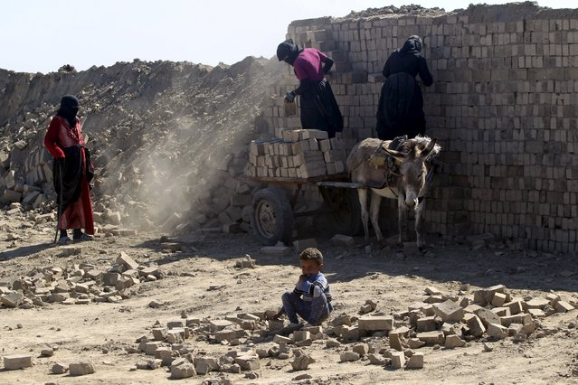 Women load bricks on a donkey-drawn cart at a brick factory in Najaf, Iraq February 9, 2016. (Photo by Alaa Al-Marjani/Reuters)